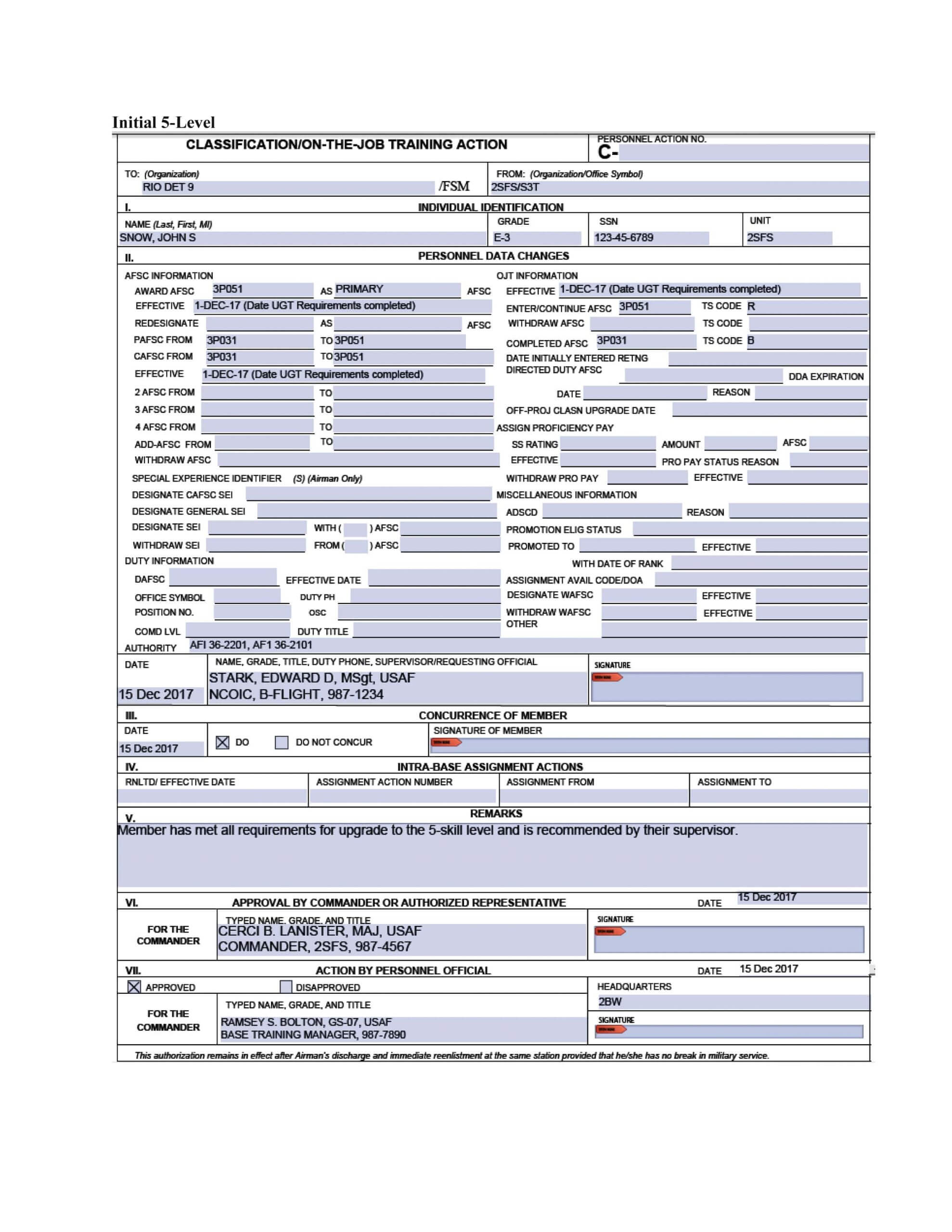 photo af form 2096 example